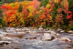 jesień kolorów strumień Obrazy Royalty Free
