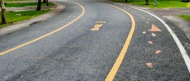 jesień kolor żółty parkowy drogowy Zdjęcia Royalty Free