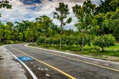 jesień kolor żółty parkowy drogowy Obrazy Stock