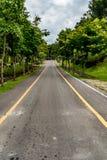 jesień kolor żółty parkowy drogowy Zdjęcia Stock