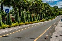 jesień kolor żółty parkowy drogowy Obrazy Royalty Free