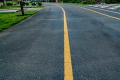 jesień kolor żółty parkowy drogowy Obraz Stock