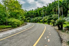 jesień kolor żółty parkowy drogowy Zdjęcie Stock