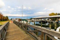 Jesień kolor Chesapeake zatoki schronienie w St Michaels i brzeg obraz stock