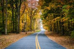 Jesień kolor wzdłuż Carmichael drogi blisko Wye wyspy, Maryland obrazy stock