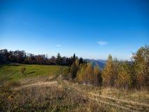 jesień kolorowa lasu krajobrazu góra fotografia stock
