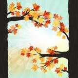 jesień kolorowy projekta liść wianek Obrazy Royalty Free