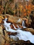 Jesień kolory Przy Obdartą rzeką zdjęcie stock