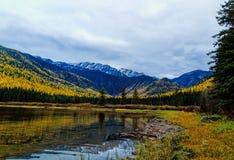 Jesień kolory Przy Stanton jeziorem fotografia royalty free