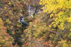 Jesień kolory wąwóz w Japonia Fotografia Royalty Free