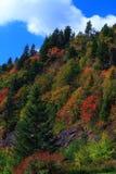 Jesień kolory Zakrywają Blue Ridge Mountains Obrazy Stock