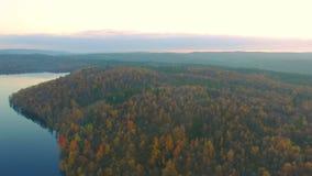 Jesień krajobraz zbiory wideo