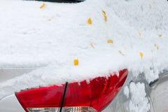 Jesień krajobraz Liście są żółci na pierwszy śniegu kolor Zdjęcia Stock