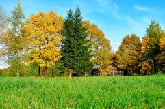 Jesień krajobraz - mały dom w żółtych jesieni drzewach w pogodnej jesieni pogodzie Fotografia Royalty Free