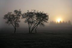 Jesień krajobraz mgła Zdjęcia Stock