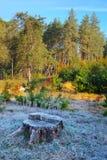 Jesień krajobraz. mróz Zdjęcia Royalty Free