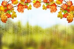 Jesień krajobraz Jesień piękni liść Fotografia Royalty Free