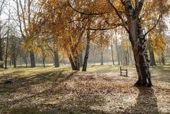 Jesień krajobraz przy las wodami, Grantham UK obraz royalty free