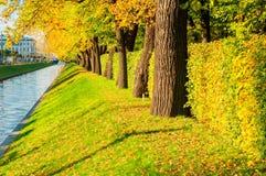 Jesień krajobraz St Petersburg - Łabędzi kanału i jesieni park z złotymi jesieni drzewami w pogodnej pogodzie Fotografia Royalty Free