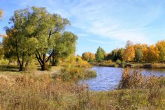 Jesień krajobraz - staw w parku Obraz Stock