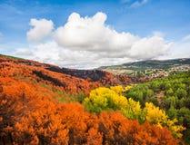 Jesień krajobraz w Castilla y Leon, Hiszpania Zdjęcie Stock