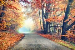 Jesień krajobraz z wiejską drogą w pomarańczowym brzmieniu Fotografia Royalty Free