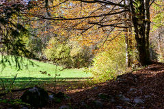 jesień krajobrazowy gór wschód słońca Fotografia Stock