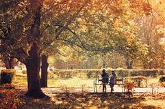 Jesień krajobrazu - piękny park w pogodnej pogodzie miasto fotografia royalty free