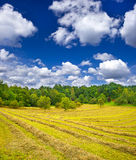 jesień kraju fieldloudy siana krajobrazu niebo Obrazy Stock