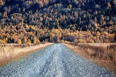 jesień kraju lasowa halna stara droga Zdjęcie Royalty Free