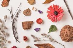 Jesień kreatywnie set suche rośliny Obrazy Stock