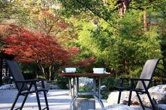jesień krzesła klon zdjęcie stock