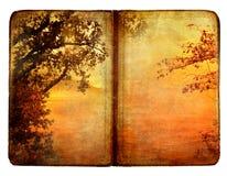 jesień książka Fotografia Royalty Free