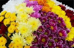 Jesień kwitnie bukiet dla prezent teraźniejszości, romantycznego gościa restauracji lub ogródu, Zdjęcie Stock