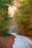 jesień las zrobił ścieżki fotografii Poland zdjęcia stock