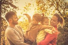 jesień lasowy Romania zmierzch fotografia royalty free