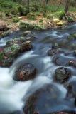 Jesień lasowy strumień Obrazy Royalty Free
