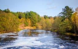 Jesień lasu nieociosany krajobraz obrazy royalty free