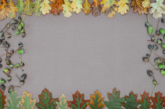 Jesień lasu rama Zdjęcia Stock