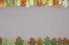 Jesień lasu rama Zdjęcia Royalty Free