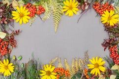 Jesień lasu rama Obraz Royalty Free