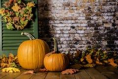 jesień liść banie Obraz Royalty Free