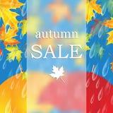 jesień liść czerwony sprzedaży słowo ilustracja wektor
