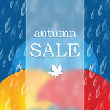 jesień liść czerwony sprzedaży słowo royalty ilustracja
