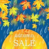 jesień liść czerwony sprzedaży słowo Obraz Stock