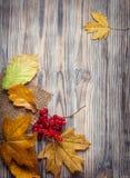 Jesień liść na drewnianego tła odgórnym widoku Fotografia Royalty Free