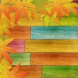 Jesień Liść na kolorowej drewna ściany teksturze Obraz Stock