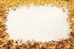 Jesień liść rama Obrazy Stock