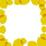 Jesień liść rama na biały tle Zdjęcia Stock