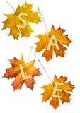 jesień liść sprzedaż Obraz Royalty Free